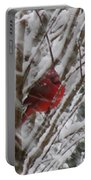 Snowing Portable Battery Charger