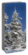 Snowscape 2 Portable Battery Charger