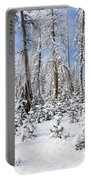 Snowscape Portable Battery Charger