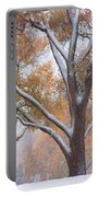 Snowy Autumn Landscape Portable Battery Charger by James BO  Insogna