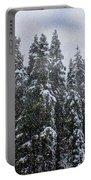 Snowy Christmas At Big Bear Lake Portable Battery Charger