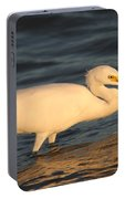 Snowy Egret By Sunset Portable Battery Charger