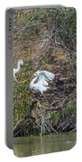 Snowy Egret Confrontation 8664-022018-1 Portable Battery Charger