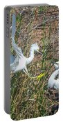 Snowy Egret Confrontation 8664-022018-1cr Portable Battery Charger