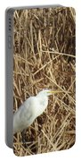 Snowy Egret In Tall Grasses Portable Battery Charger