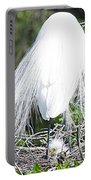 Snowy Egret Mom And Chick Portable Battery Charger