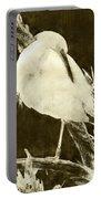 Snowy Egret Portrait Portable Battery Charger