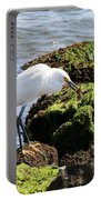 Snowy Egret  Series 2  1 Of 3  The Catch Portable Battery Charger