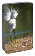 Snowy Egret Stretch 4280-080917-3cr Portable Battery Charger