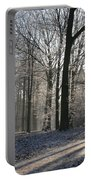 Mystical Winter Landscape Portable Battery Charger