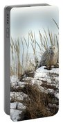 Snowy Owl In Dunes #2 Portable Battery Charger