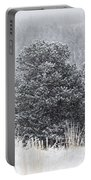 Snowy Pines In The Pike National Forest Portable Battery Charger