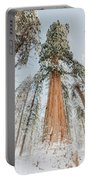 Snowy Sequoias At Calaveras Big Tree State Park 2 Portable Battery Charger