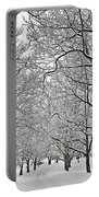 Snowy Treeline Portable Battery Charger