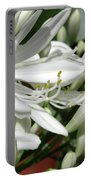 Snowy White Beauty. 7 Portable Battery Charger