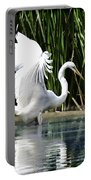 Snowy White Egret In The Wetlands Portable Battery Charger