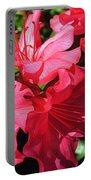 Shine On Azalea Portable Battery Charger