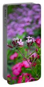 Soapwort And Pinks Portable Battery Charger