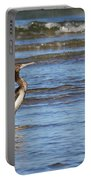 Socotra Cormorant Portable Battery Charger