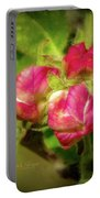 Soft And Soothing 2 Portable Battery Charger