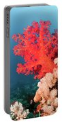 Soft Coral  Portable Battery Charger