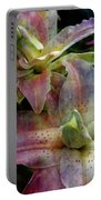 Soft Lilies 3637 Idp_2 Portable Battery Charger