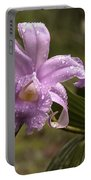 Soft Pink One-day Orchid With Droplets Of Dew Portable Battery Charger