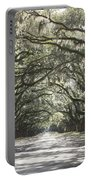 Soft Southern Day Portable Battery Charger