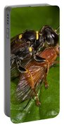 Solitary Wasp Portable Battery Charger