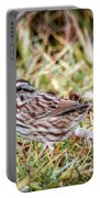 Song Sparrow Sweetie Portable Battery Charger