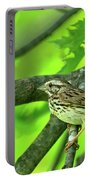 Songsparrow In Spring Portable Battery Charger