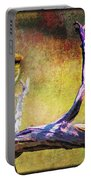 Sonoran Desert Dreamscape Portable Battery Charger