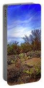 Sonoran Desert H1819 Portable Battery Charger