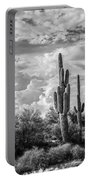 Sonoran Desert View Portable Battery Charger