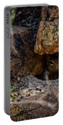 Sonoran Prairie Dog Portable Battery Charger