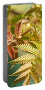 Sorbaria Sorbifolia Spring Foliage Portable Battery Charger