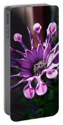 South African Daisy Portable Battery Charger