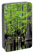 South Carolina Low Country Portable Battery Charger