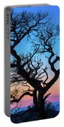 South Rim Tree Portable Battery Charger