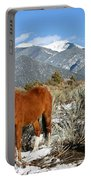 South West Ginger Portable Battery Charger