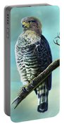 Southern Banded Snake Eagle Portable Battery Charger
