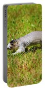 Southern Fox Squirrel Portable Battery Charger