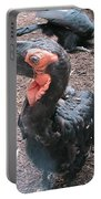 Southern Ground Hornbill Portable Battery Charger