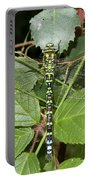 Southern Hawker Portable Battery Charger