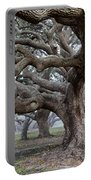 Southern Live Oak Portable Battery Charger
