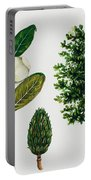 Southern Magnolia Or Bull Bay  Portable Battery Charger