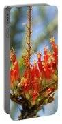 Southwest Ocotillo Bloom Portable Battery Charger