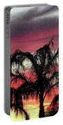 Southwest Sunset Portable Battery Charger