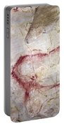 Spain: Cave Painting Portable Battery Charger