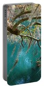 Spanish Moss And Emerald Green Water Portable Battery Charger